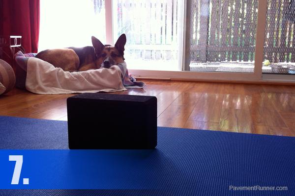 07-yoga-dog