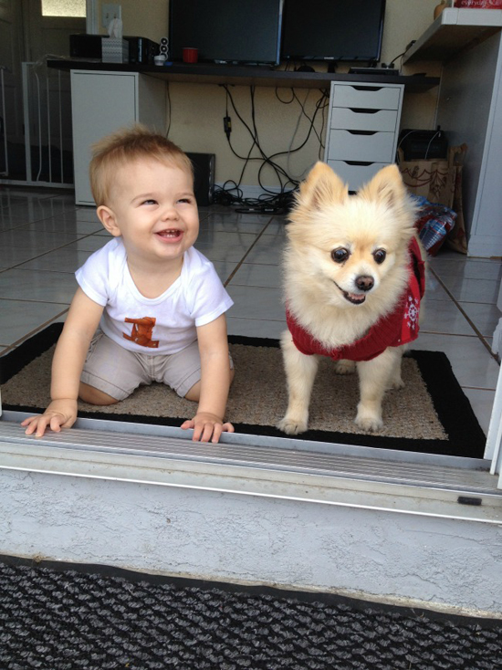 My first grandson Samuel (on his first birthday) and grand-dog Teddy are great companions (and both are adorable). — http://livefromlaquinta.com/